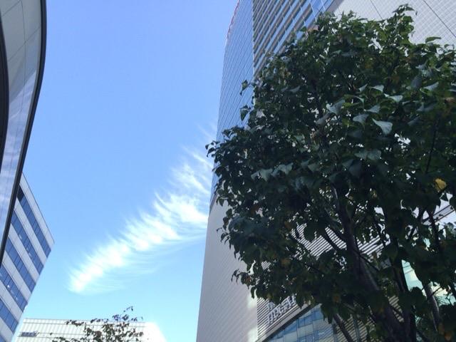 【龍・龍神様の写真】龍神雲
