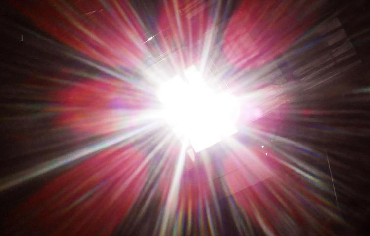 太陽の光の花