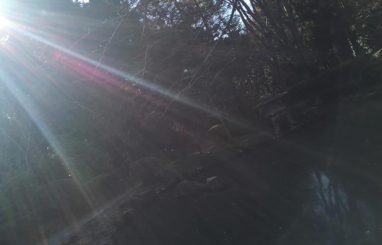 光の根源から来たものとして。