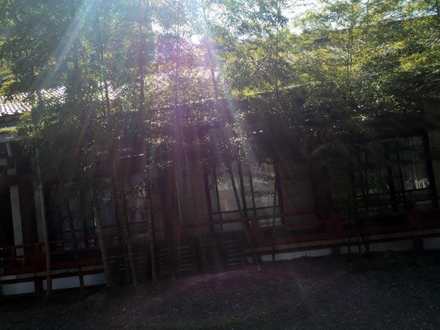日枝神社での光動画を追加しました