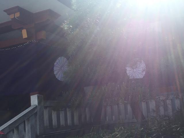日枝神社 光