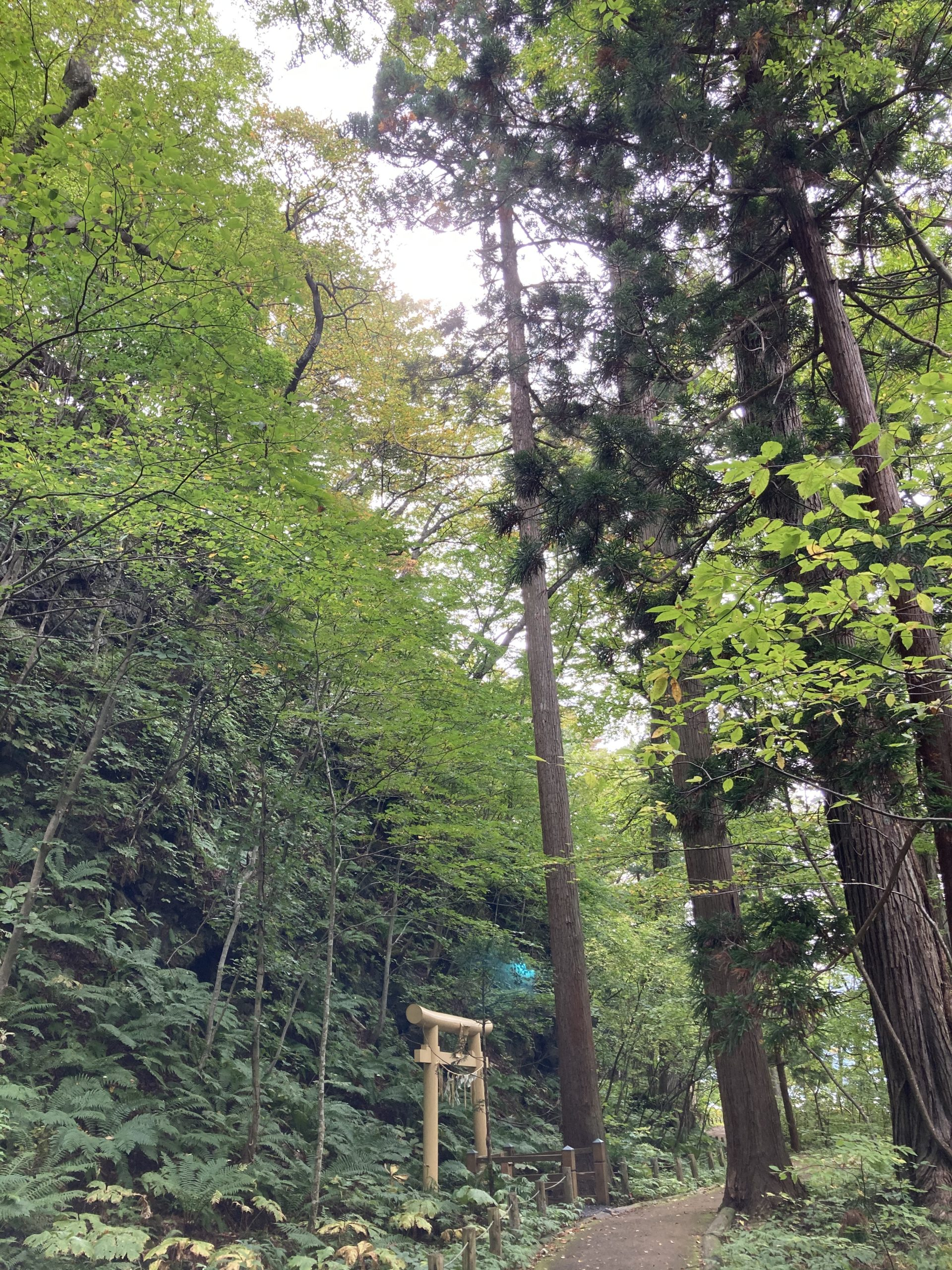 十和田神社 開運の小道